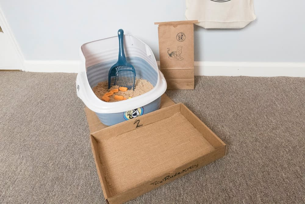 the rude kitty litter system