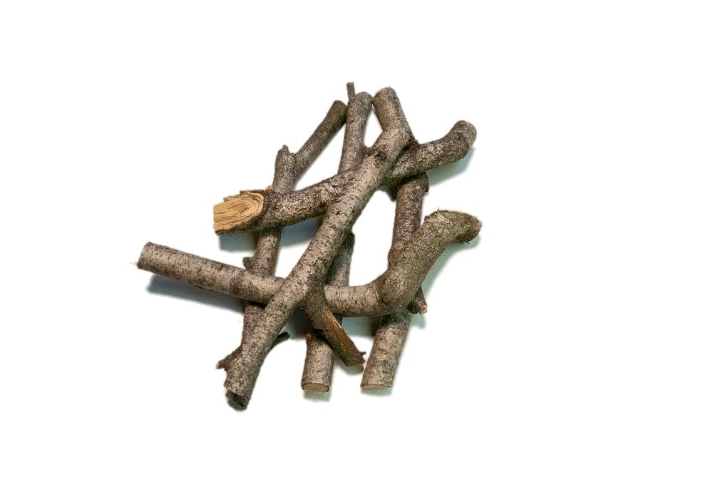 fetch stick toy