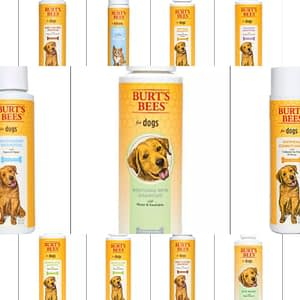 burts bees soap