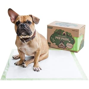 biodegradable dogie pee pads